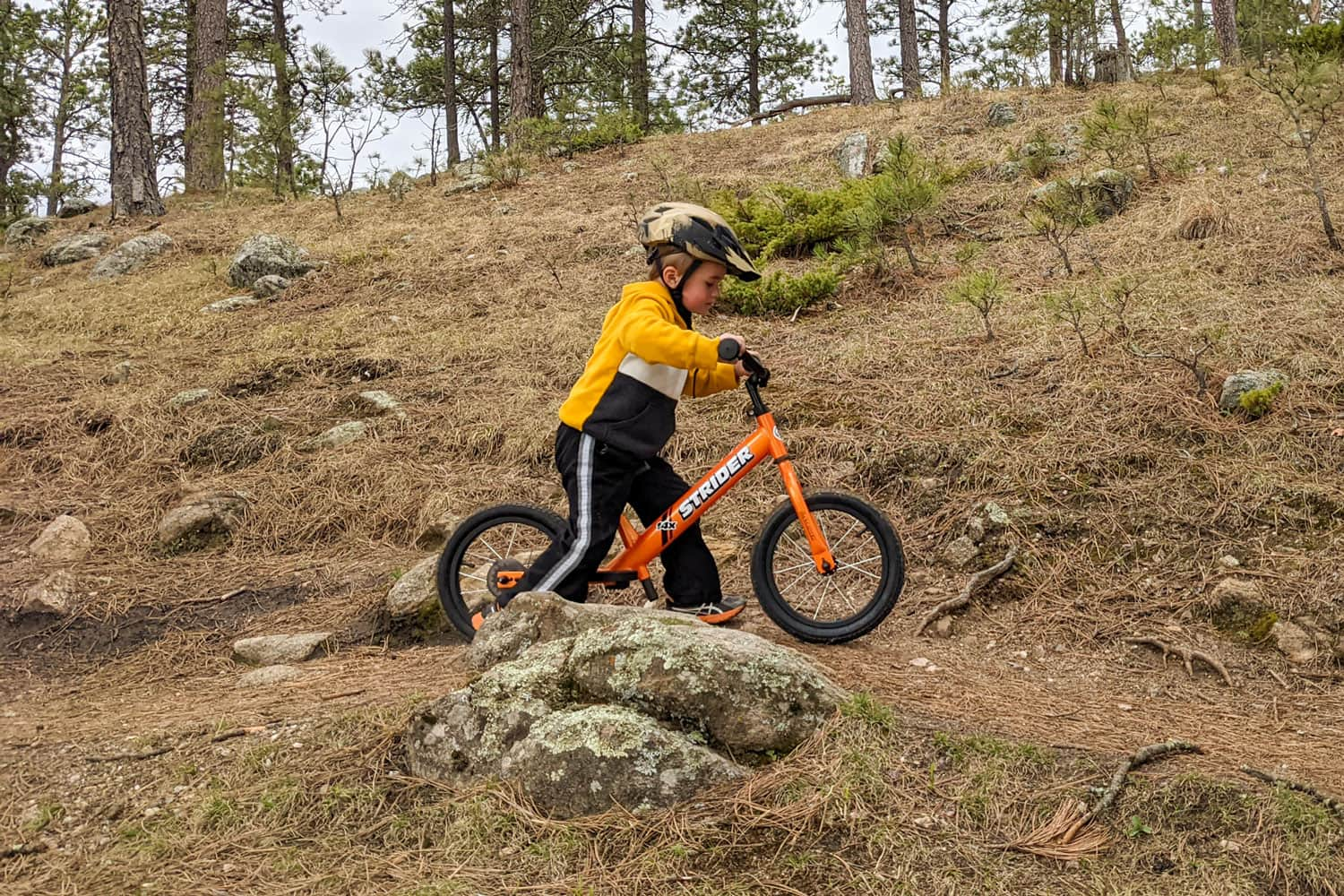 A child riding a Totally Tangerine colored Strider 14x Sport balance bike on a forest trail